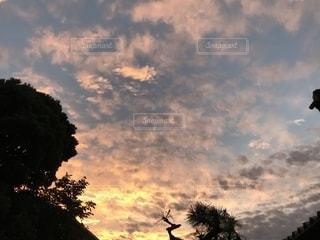 自然,空,秋,雲,夕焼け,夕暮れ,うろこ雲,秋空