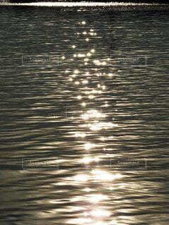 午後5時頃の光と影 【午後の水面】の写真・画像素材[4435524]