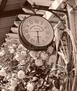 セピア色の薔薇の花と古い西洋時計の写真・画像素材[4730193]