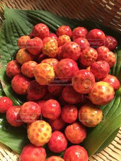 自然,秋,木の実,赤い実,秋の味覚,完熟,山法師,ヤマボウシの実