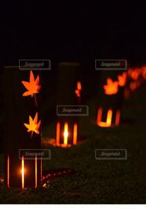 秋,紅葉,ライトアップ,香嵐渓,灯祭り