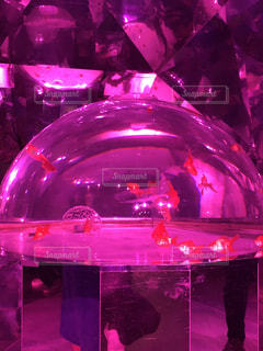 ピンク,水族館,金魚,万華鏡,金魚万華鏡,マリンパークニクス,ピンクの世界