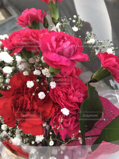 花,ピンク,花束,カーネーション