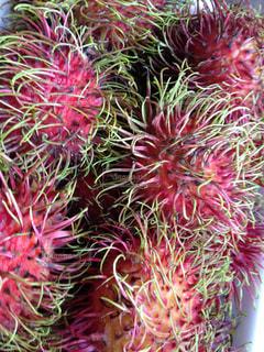 フルーツ,果物,タイ,ランブータン