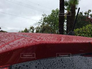 空,屋外,緑,赤,水滴,樹木,電線,自動車,曇り空,雨上がり,コントラスト,雨粒,深緑,赤と緑,赤い自動車,真っ赤な車