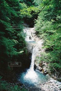 森の中の滝の写真・画像素材[1470617]