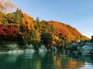 自然,空,紅葉,屋外,川,水面,樹木,長瀞,川下り,秋空