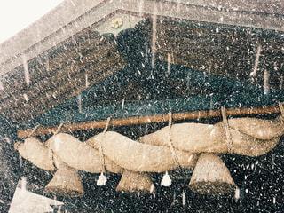 雪の出雲大社の写真・画像素材[1733855]
