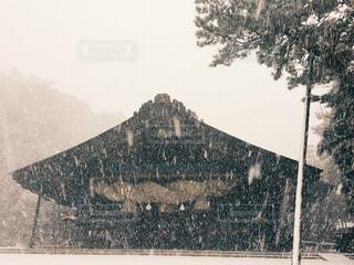 雪の出雲大社の写真・画像素材[1733859]