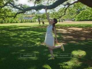 芝生,ワンピース,青空,洋服,外,ハワイ,夏服,日立の木