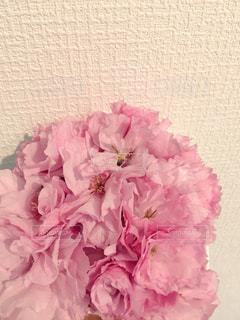 花,屋内,ピンク