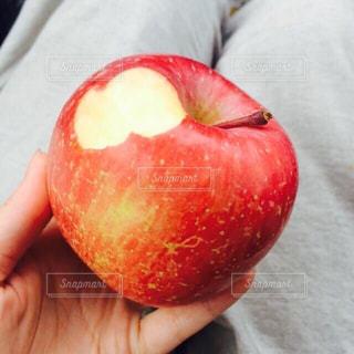 食べかけのりんごの写真・画像素材[1801241]