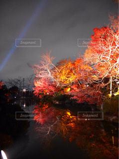 秋,紅葉,秋空