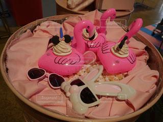 ピンク,韓国,フラミンゴ,pink,ピンクだらけ