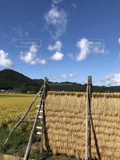 秋,田んぼ,秋空,稲刈り,秋の空,秋の風景