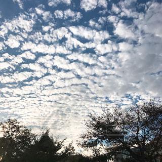 空,秋,雲