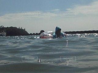 海水浴,水面,海岸,水泳