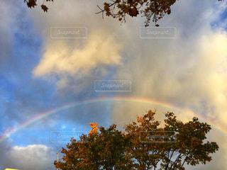 夕方の虹と紅葉の写真・画像素材[1585771]