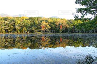 秋,絶景,紅葉,湖,透明,池,北海道,旅行,水鏡,知床,道東,知床五湖,秋空,10月,フォトジェニック,インスタ映え,五湖