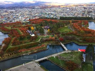 五稜郭公園の桜の紅葉の写真・画像素材[1610022]