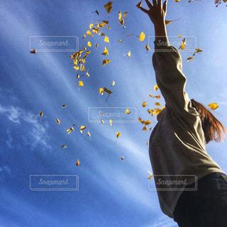 女性,空,秋,紅葉,青,葉っぱ,黄色,手,人物,人,ひとり,未来,夢,黄,散る,秋空,羽ばたく,希望,高い,舞う