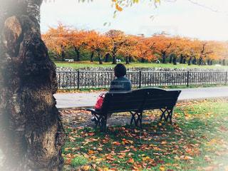 五稜郭公園のベンチで休憩する女性の写真・画像素材[1613477]
