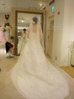 花嫁、衣装選びの写真・画像素材[1647033]