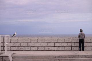 男性,海,白,北海道,防波堤,人物,ひとり,カモメ,眺める