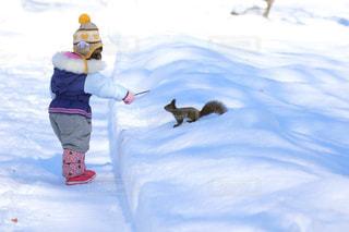 雪の中子供とリスの写真・画像素材[1661638]