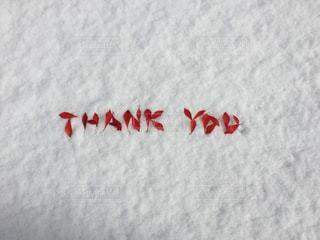 紅葉,文字,雪,葉っぱ,メッセージ,ありがとう,サンキュー,フォトジェニック,インスタ映え