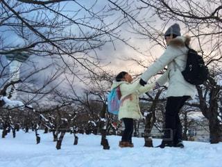 雪の中に立っている親子、五稜郭公園の写真・画像素材[1675022]