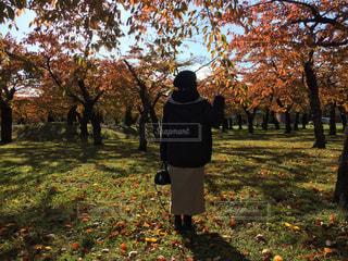 木の隣に立っている人の写真・画像素材[2806072]