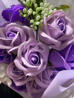 紫の薔薇の花束の写真・画像素材[3955119]