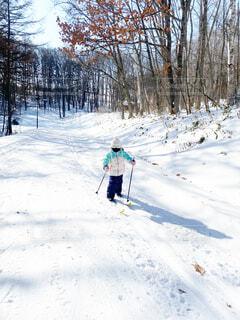 自然,風景,冬,森林,木,雪,屋外,歩く,人,ひとり,スキー,運動,ハイキング,初,斜面,ウィンタースポーツ,はじめて,日中,初心者,散策,歩くスキー,ハイキング機器