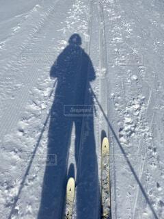 自然,風景,冬,森林,木,雪,屋外,歩く,影,人,ひとり,スキー,運動,ハイキング,初,斜面,ウィンタースポーツ,はじめて,日中,初心者,散策,歩くスキー,ハイキング機器