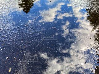 雨上がりの水たまりに映る青空の写真・画像素材[4918101]