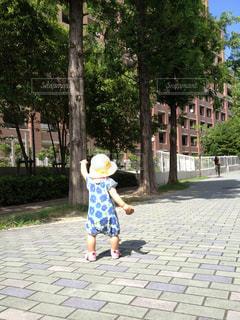 お散歩する小さな女の子の写真・画像素材[2287228]