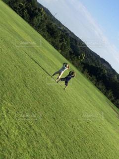 自然,草原,後ろ姿,山,人物,背中,人,後姿,兄弟,コンテスト