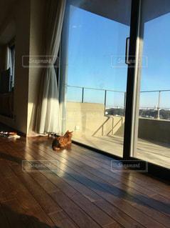 家具と大きな窓で満たされたリビングルームの写真・画像素材[2507245]