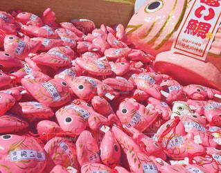 ピンク,おみくじ,鯛,氷川神社,あいたい