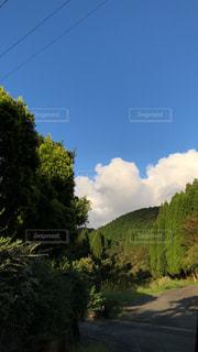 青空,爽やか,秋晴れ,気持ちいい,秋の空