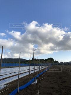 青空,爽やか,秋晴れ,気持ちいい,秋の空,秋雲