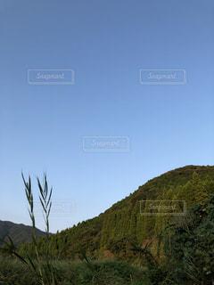 自然,空,秋,緑,晴天,青,山,秋晴れ