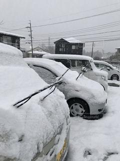 雪,白い,車に雪