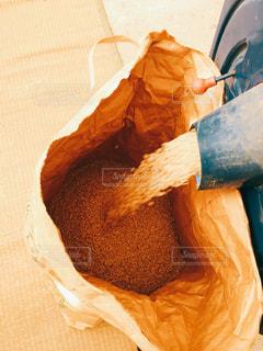 田んぼ,米,収穫,田畑,稲刈り,玄米,実りの秋,食欲の秋,ライスシャワー
