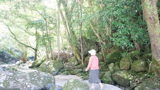 晴れ,旅行,快晴,お散歩,鹿児島,山登り,彼女