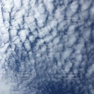 空,秋,雲,綺麗,青空,青,景色,鮮やか,くもり,秋空
