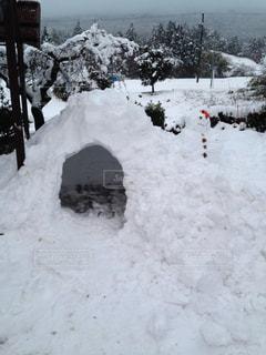 自然,屋外,景色,雪だるま,かまくら,ホワイト