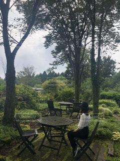 女性,1人,空,公園,インテリア,花,秋,木,庭,森,緑,雲,静か,後ろ姿,草,テーブル,樹木,人物,人,癒し,旅行,旅,家具,風,森林浴,眺め,イス,ウッドチェア,ウッドテーブル