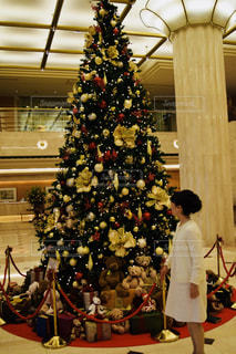 クリスマスにアップスタイルの写真・画像素材[1493742]